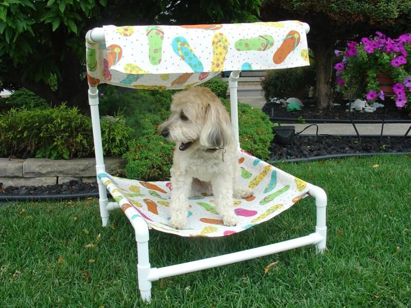 canopy dog beds - Walmart.com